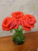 Цветы для детей из гофрированной бумаги – Поделки, цветы из гофрированной бумаги, мастер класс / Детское творчество в детском саду: аппликации и поделки из цветной бумаги, картона для детей / Ёжка