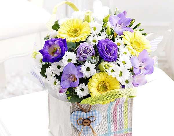 cvety-pohozhie-na-astry-nazvanie_45.jpg