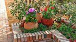 Дизайн цветника на даче – красивые варианты оформления камнями дизайна клумбы, как сделать декор из многолетников своими руками