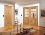 Дверь в зал двойная – Как выбрать дверь в зал: особенности и рекомендации (27 фото): двухстворчатые и двойные межкомнатные двери для проходной комнаты, модели для гостиной с тремя дверями
