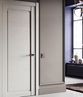 Интерьер двери межкомнатные – светлые и темные варианты для квартиры и для частного дома, реальные примеры и советы по выбору