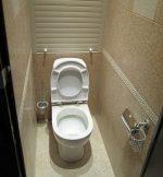 Как обустроить маленький туалет в квартире фото