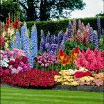 Красивые клумбы фото – Как начинающим сделать своими руками красивые клумбы на даче из многолетников: виды и фото цветников