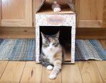 Лежанка для кошки из коробки – Как сделать домик для кошки из коробки 🚩 домик для кота своими руками из коробки 🚩 Оборудование и аксессуары