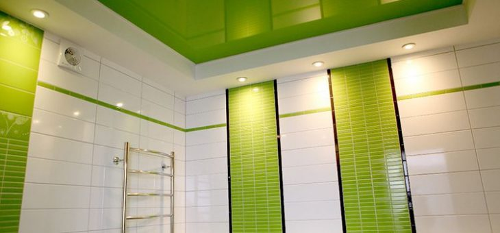 Натяжные потолки в туалете фото и ванной – Как подобрать натяжные потолки в туалет, фото виниловых потолочных систем. Делаем натяжной потолок в ванной и туалете: плюсы и минусы