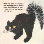 Своими руками комплексы для кошек – 2QM.ru: Игровой комплекс для кошек своими руками. Как делать игровые уголки для кошек