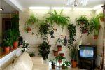 В интерьере гостиной цветы фото – Комнатные Растения в Интерьере Квартиры и Дома, Оформление и Уход